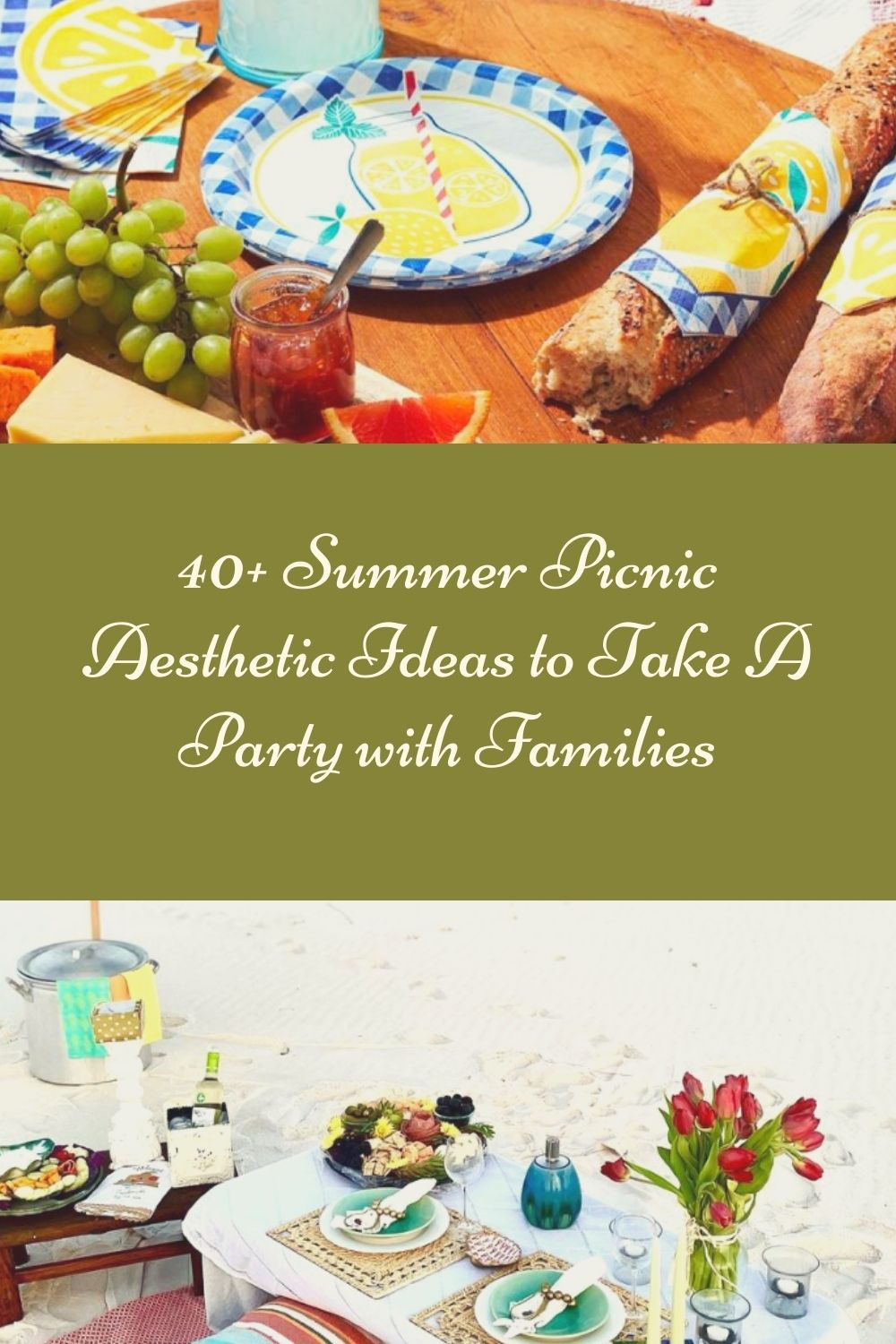 40+ Summer Picnic Aesthetic Ideas to Take A Party with Families