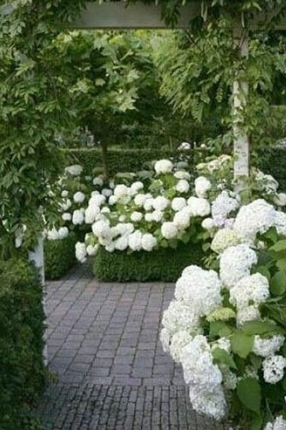 Tips For Landscaping Ideas For The Front Of House!
